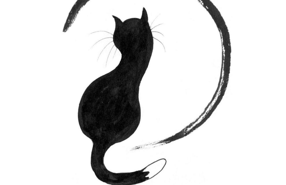 Mitchimou – Die kleine Katze, die nach Weisheit und Stille suchte